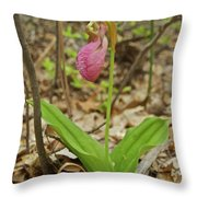 Lady Slipper 2037 Throw Pillow