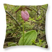 Lady Slipper 2054 Throw Pillow