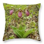 Lady Slipper 2059 Throw Pillow