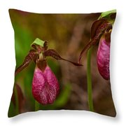 Lady Slipper Close-up  Throw Pillow