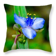 Lady Slipper Yard Weed. Throw Pillow