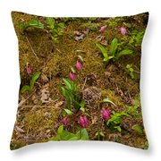 Lady Slippers And Star Flower Throw Pillow