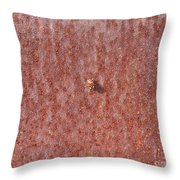 Ladybudy Throw Pillow