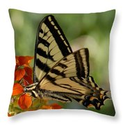 Ladybug And Tigertail Throw Pillow