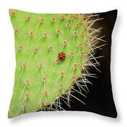 Ladybug On Cactus Throw Pillow