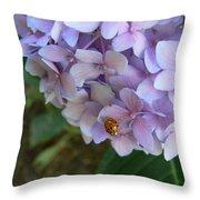 Ladybug On Hydrangea Throw Pillow