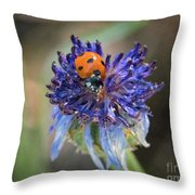 Ladybug On Purple Flower Throw Pillow