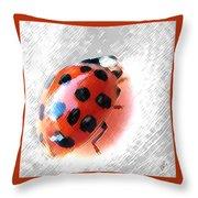 Ladybug Spectacular Throw Pillow