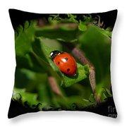 Ladybug With Swirly Framing Throw Pillow