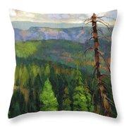 Ladycamp Throw Pillow