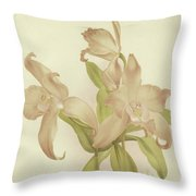 Laelia Autumnalis Venusta Throw Pillow