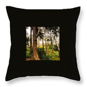 Lafayette Park Throw Pillow