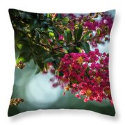 Lagerstroemia Indica Crape Myrtle Crepe Myrtle Throw Pillow