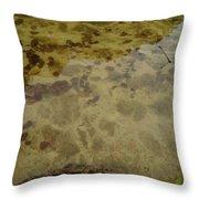 Lago Transparente Throw Pillow
