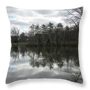 Lagoon Reflection 1 Throw Pillow