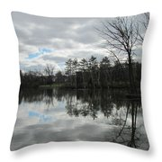 Lagoon Reflections 4 Throw Pillow