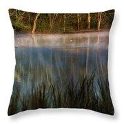 Lagoon Sunrise Throw Pillow