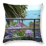 Laguna Beach, Southern California 11 Throw Pillow