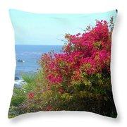 Laguna Beach, Southern California 3 Throw Pillow