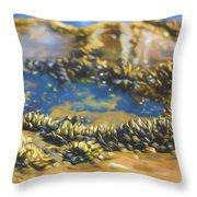 Laguna Beach Tide Pool Pattern 3 Throw Pillow