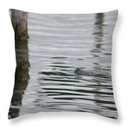 Laguna Guerrero Throw Pillow