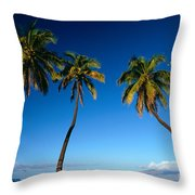 Lahaina, Five Coconut Tre Throw Pillow