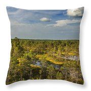 Lahemaa Panorama From Above Throw Pillow
