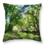 Lahinja River Throw Pillow