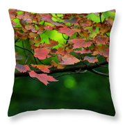Laid Upon The Branches Throw Pillow