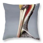 La Jolla Pelican Throw Pillow