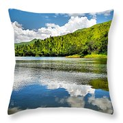 Lake Agua Blanca Throw Pillow