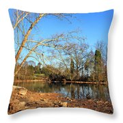 Lake And Trees In Early Spring Throw Pillow