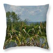 Lake Apopka Throw Pillow