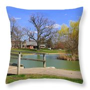 Lake At Schiller Park Throw Pillow