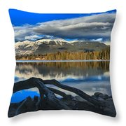 Lake Beauvert Roots Throw Pillow