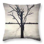 'lake Bonney' Throw Pillow
