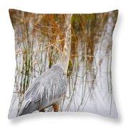 Lake Carmi Visitor Throw Pillow