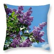 Lake Country Lilacs Throw Pillow