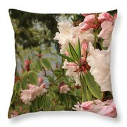 Lake Crescent Lodge Rhododendrons Throw Pillow