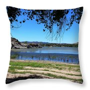 Lake Day Throw Pillow