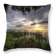 Lake Dora Throw Pillow