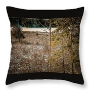 Lake Edge Throw Pillow