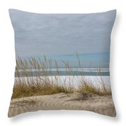 Lake Erie Ice Blanket With Sand Dunes And Dry Grass Throw Pillow