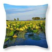 Pointe Mouilee Lake Erie Throw Pillow