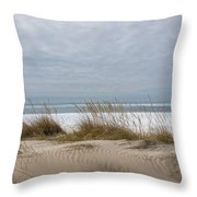Lake Erie Sand Dunes Dry Grass And Ice Throw Pillow