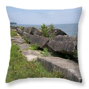 Lake Front Park Throw Pillow