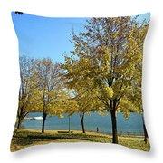 Lake George  12 Throw Pillow