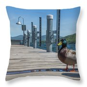Lake George Duck Throw Pillow