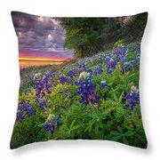 Lake Grapevine Twilight Throw Pillow