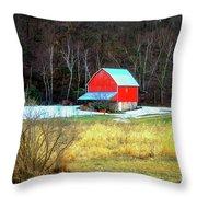 Lake Hallie Barn Throw Pillow